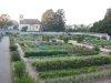 Le jardin potager: il a été restauré en fonction des documents d'époque, et est un véritable conservatiore vivant des fruits et légumes du XVIIIe siècle.
