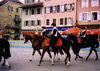 Cavaliers dans la ville