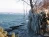 Bords du lac, vue vers Cologny